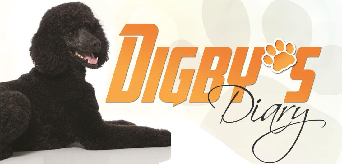 Digby's Diary
